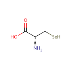 Selenocysteine